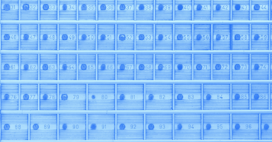 What Should You Keep In Your Digital Safe Deposit Box?