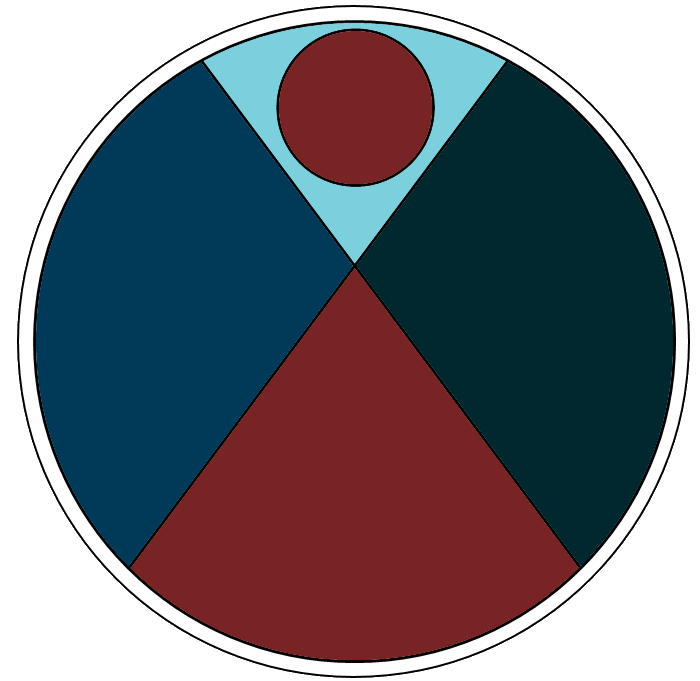 Life Stage Insights Logo